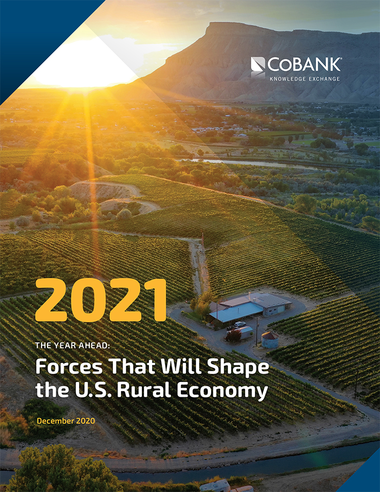 The Year Ahead: Forces That Will Shape the US Rural Economy in 2021